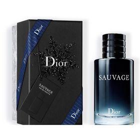 sauvage-edicao-especial-de-natal-dior-perfume-masculino-eau-de-toilette1