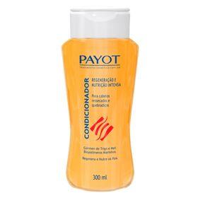 payot-germen-de-trigo-e-mel-condicionador