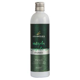 les-aromes-andiroba-e-copaiba-organico-amazonia-shampoo