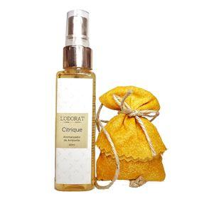 aromatizador-de-ambiente-lodorat-citrique-60ml