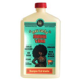 meu-cacho-minha-vida-lola-cosmetics-shampoo-hidratante-500ml